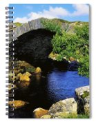 River Owenwee, Poisoned Glen, Co Spiral Notebook