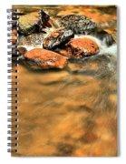 River Rock Swirl Spiral Notebook