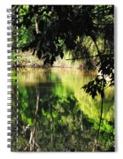 River Through The Trees Spiral Notebook