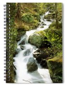 River With Trees In The Forest Spiral Notebook
