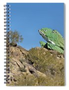 Road Frog Spiral Notebook