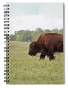 Roaming The Plains Spiral Notebook