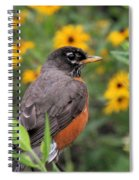Robin Among Flowers Spiral Notebook