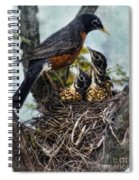 Robin And Babies In Nest Spiral Notebook