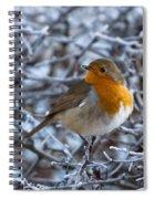 Robin On A Frosty Morning Spiral Notebook