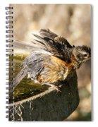 Robin Shaking Water Off Spiral Notebook