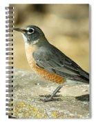 Robins Spiral Notebook
