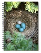 Robins Nest And Cowbird Egg Spiral Notebook