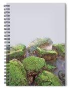 Rock Bottom Spiral Notebook