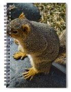 Rock Jumpin Varmint Spiral Notebook