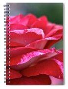 Rock N Roll Rose Spiral Notebook