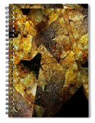 Rock Painting 5  Spiral Notebook