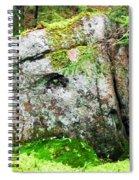 Rock Spirits Keeping Secrets Spiral Notebook