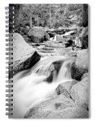 Rock Steady Spiral Notebook