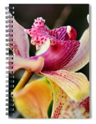 Rocking Chair Orchid Spiral Notebook