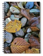 Rocks And Leaves Spiral Notebook
