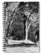 Rocks And Trees In Black And White Spiral Notebook