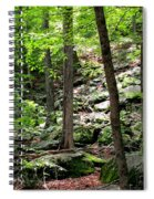 Rocky Forest Of Chatfield Spiral Notebook