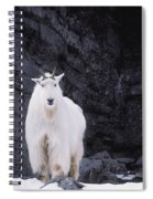 Rocky Mountain Goat Spiral Notebook