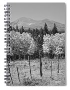 Rocky Mountain High Country Autumn Fall Foliage Scenic View Bw Spiral Notebook