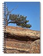 Rocky Tree Spiral Notebook