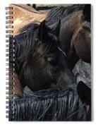 Rodeo Bucking Stock Spiral Notebook