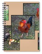 Rooster Red Spiral Notebook