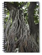 Roots From A Large Tree Inside Jallianwala Bagh Spiral Notebook