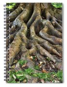 Roots Of Glory Spiral Notebook