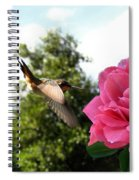 Rose And Rufous Spiral Notebook