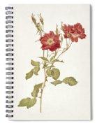 Rose Bourbon Spiral Notebook