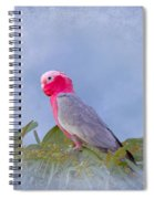 Rose Breasted Cockatoo In A Eucalyptus Tree Spiral Notebook