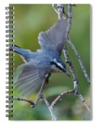 Rose Breasted Nuthatch Flying Spiral Notebook