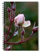 Rose Candelabra Spiral Notebook