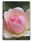 Rose Flower Series 12 Spiral Notebook