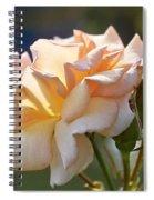 Rose Flower Series 15 Spiral Notebook
