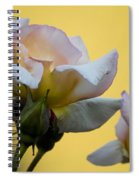 Rose Flower Series 3 Spiral Notebook
