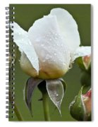 Rose Flower Series 5 Spiral Notebook