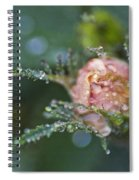 Rose Flower Series 9 Spiral Notebook