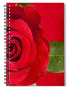 Rose Flower Wet 1 B Spiral Notebook