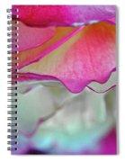 Rose Folds II Spiral Notebook