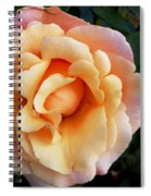 Rose Of Many Pastels Spiral Notebook