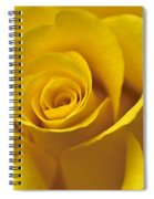 Rose Poetry Spiral Notebook