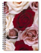 Rose Rosa Sp Flowers, Close Up Of Many Spiral Notebook
