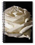 Rose Silver Anniversary Spiral Notebook
