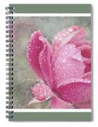 Rose Triptych 11 Spiral Notebook
