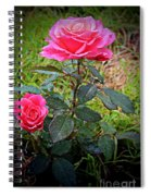 Rose Vignette Spiral Notebook