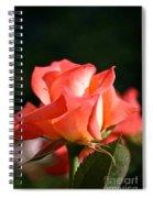Rosebud Folklore Spiral Notebook