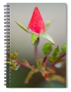 Rosebud Spiral Notebook