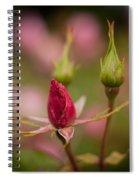 Rosebud Standout Spiral Notebook